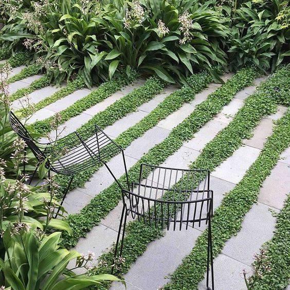 Tlakovanje vrta
